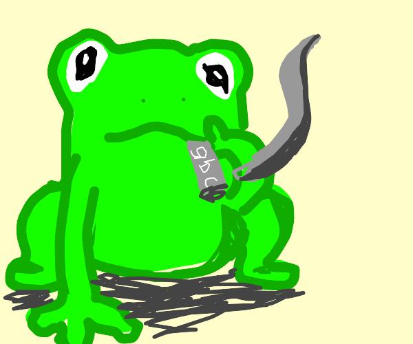 frog smoking a... gbc?