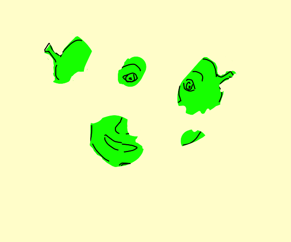 Shrek has been ripped into multiple pieces
