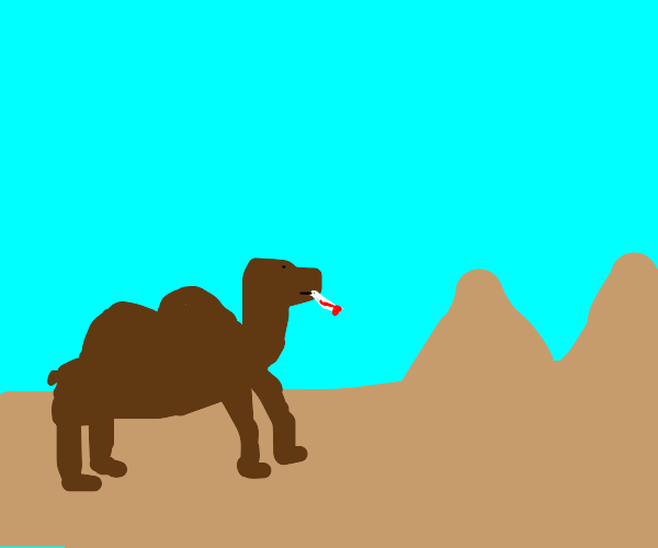 camel has wrong type of thermometer
