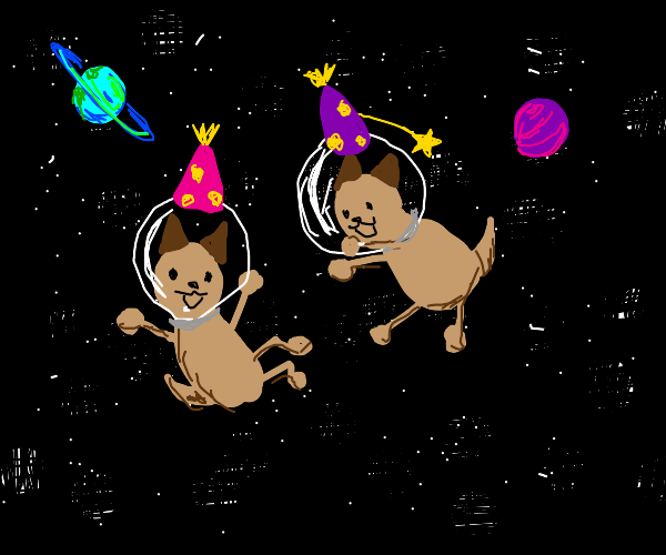 puppy birthday party in space