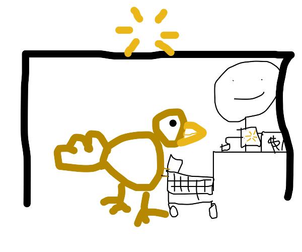Grocery Shopping Chicken