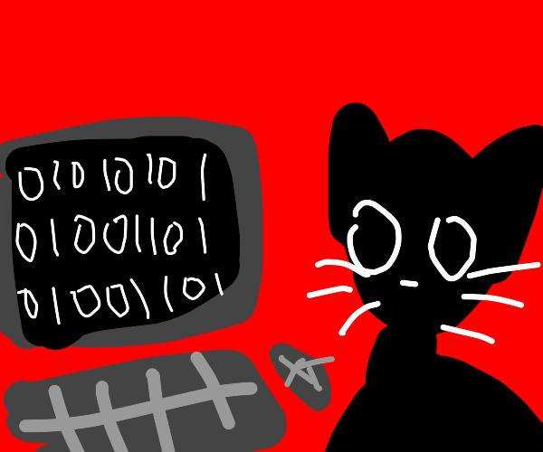 "Cat writes ""UMM"" in binary code"