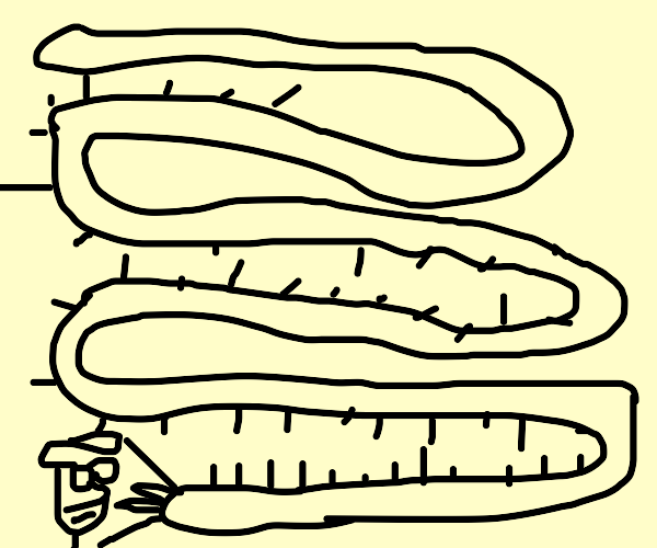 Extreme Centipede