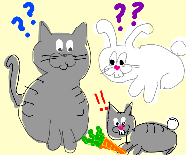 cat and bunny