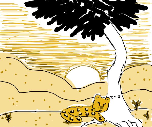 A leopard rests by a tree in a barren desert.