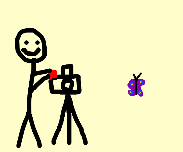 person recording a butterfly
