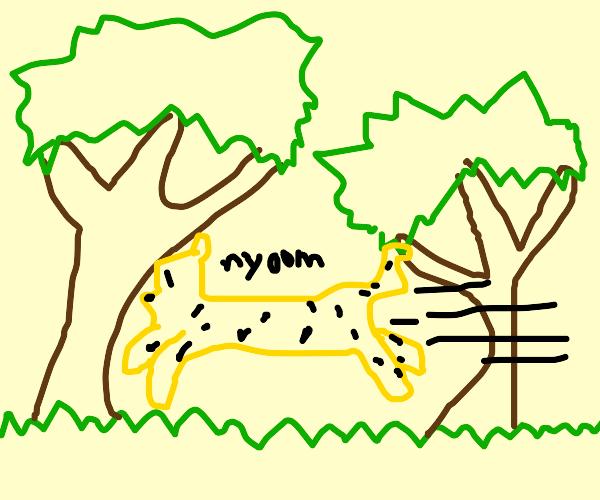Cheetah running through savanna