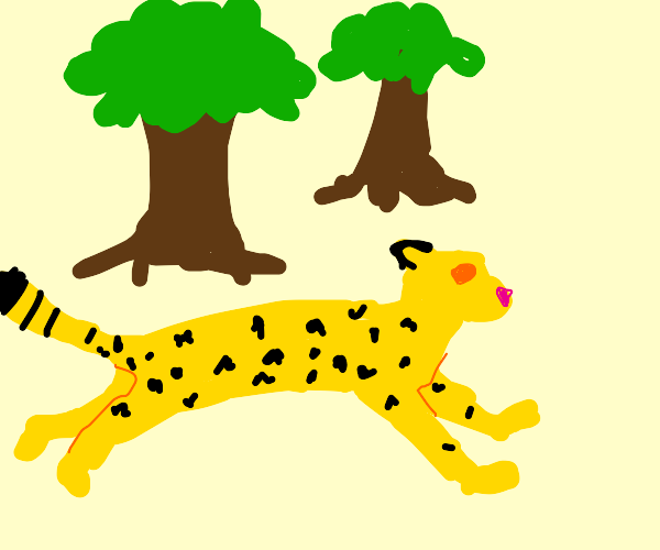 a cheetah sprints past a couple trees