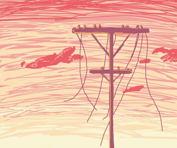 a broken power line