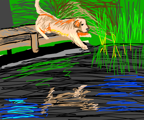 dog or something jumping in the water