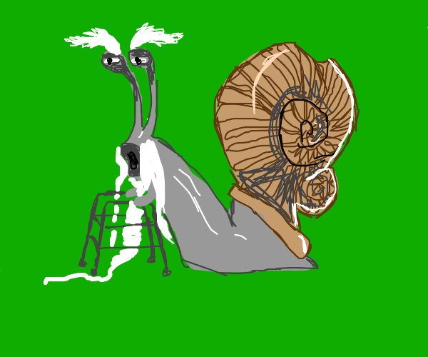 Old snail with a walker