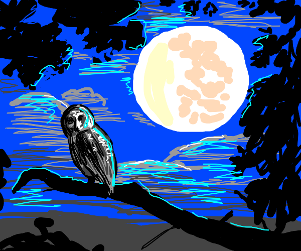 an owl on a branch under a big full moon
