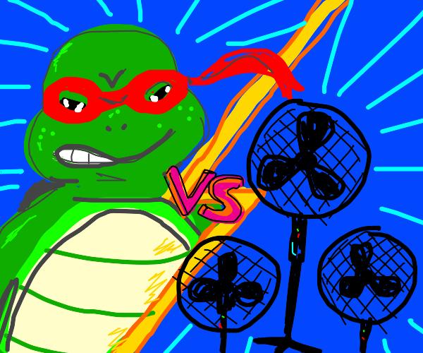 Ninja Turtle Vs Fans