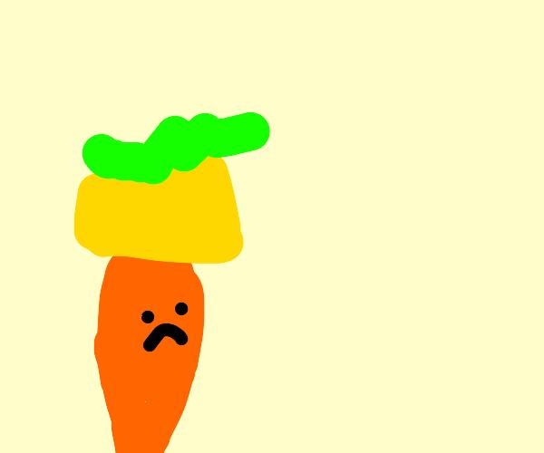 Sad Carrot King