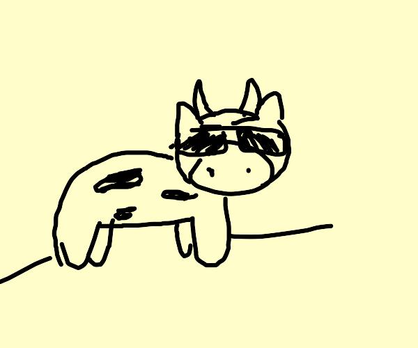 vibing cow