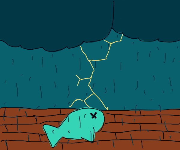 Dead fish in thunderstorm