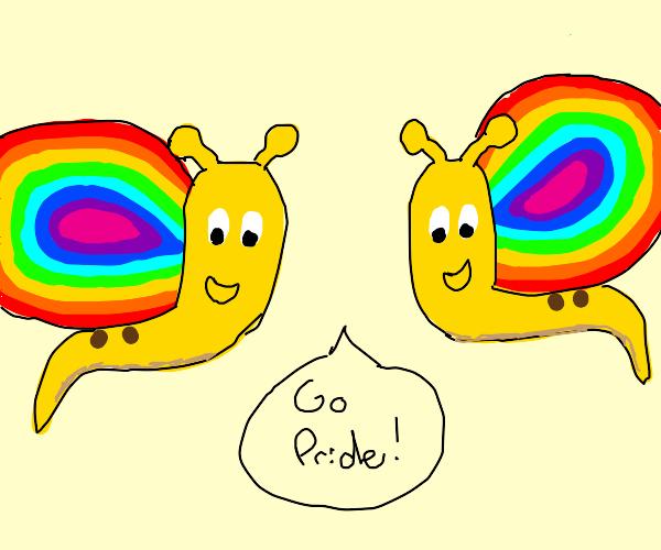 gay snails say happy pride!!!