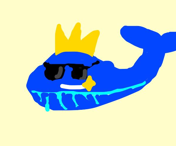 Epic Blue Whale