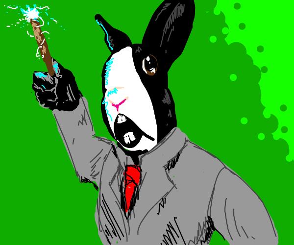 Rabbit Wizard