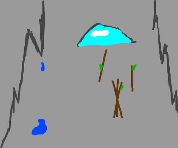 Sticks in a cave