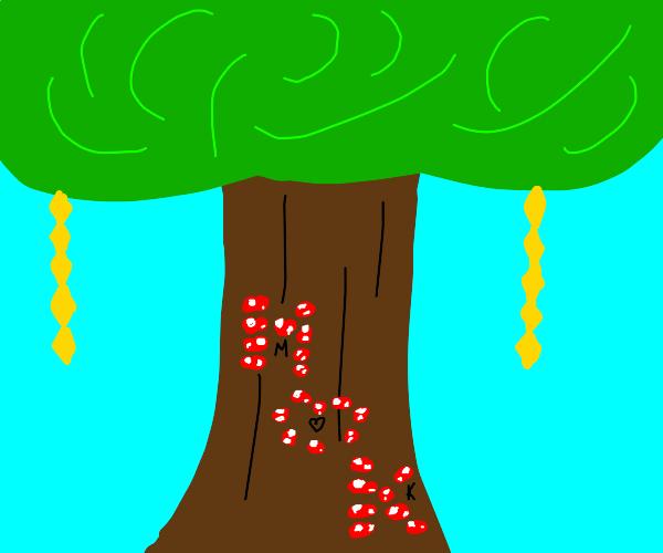 Tree with K(heart)M written n giant mushrooms