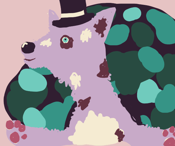 turtle dog with a top hat