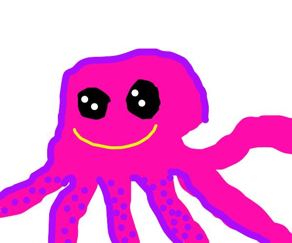 A cute little octopus