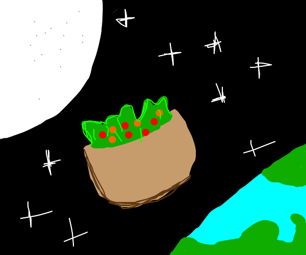 Oops, I spilled my salad in space