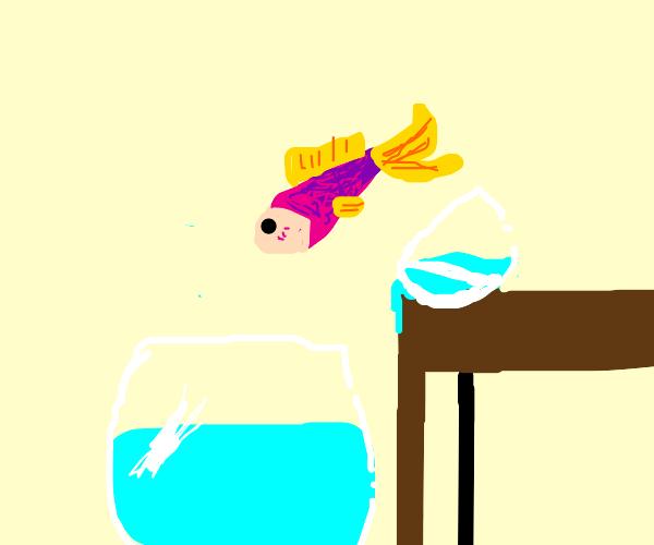 Fish jumping from small bowl to bigger bowl