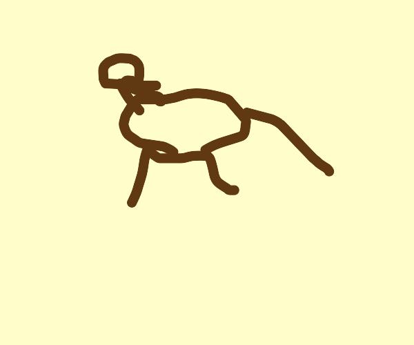 a perturbed looking deer