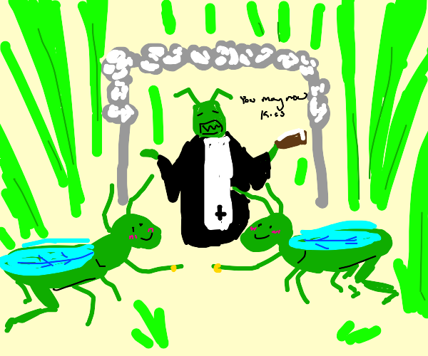 Grasshopper wedding