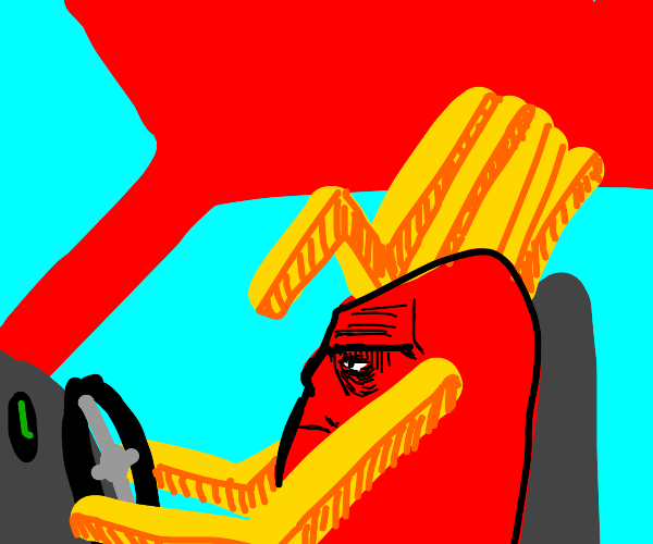 Driving with Fries