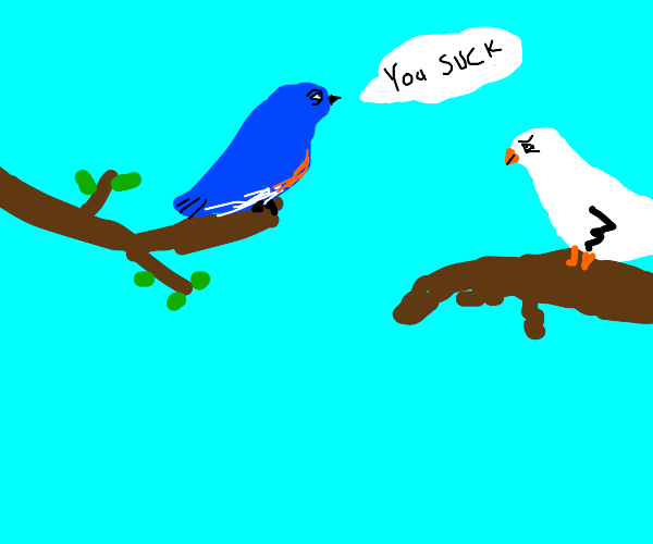 A blue bird is mean to a dove