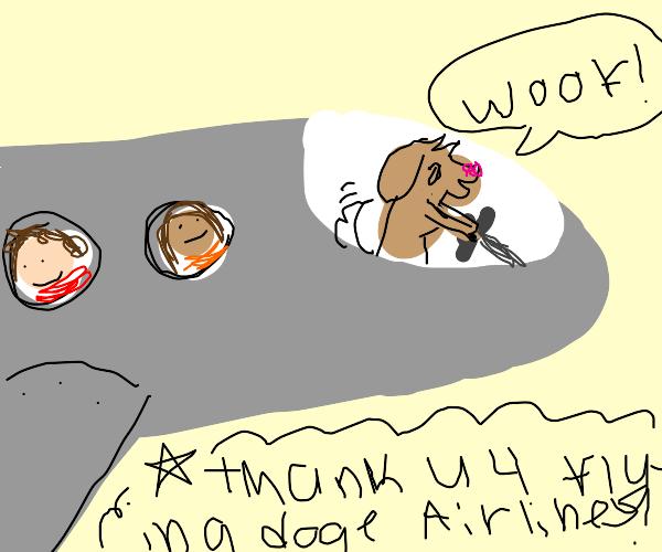 Doggo Flying A Plane