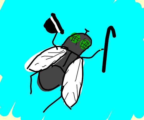 Unique Fly
