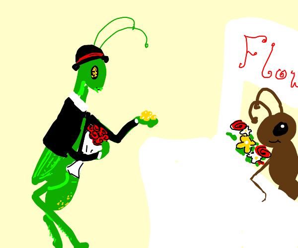 Grasshopper buying Flowers