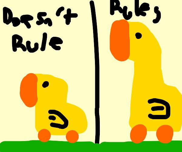 Giant Ducks rule the world!