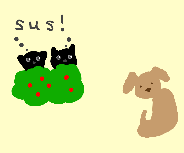 2 black cats spy on a dog