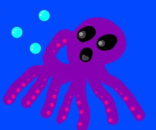 Octopus is shocked