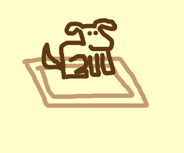 doggo sitting on a rug