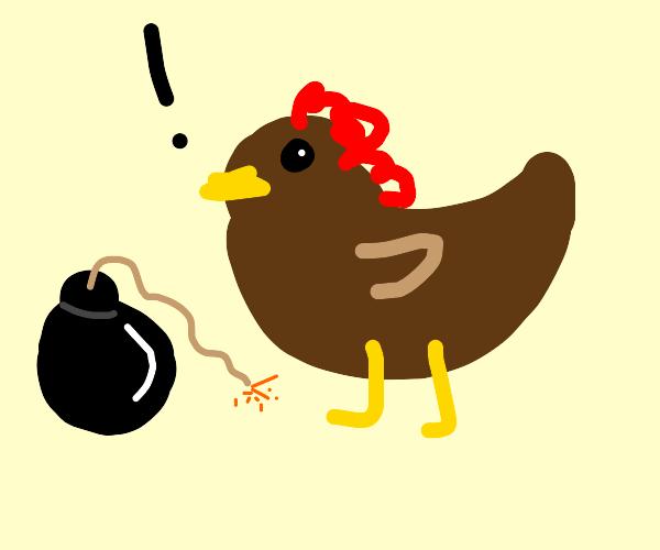 Chick-o-bomb