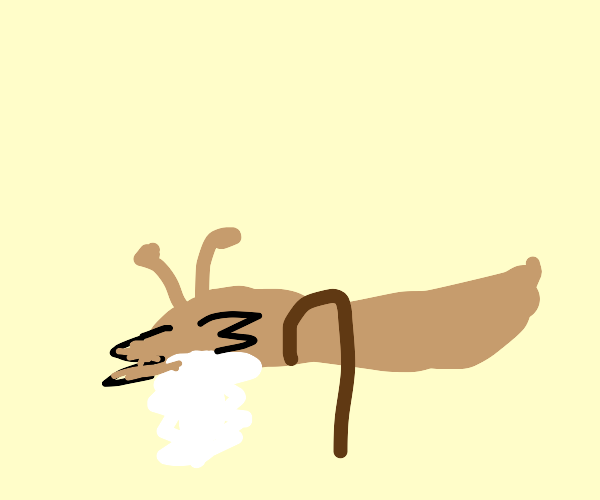 Old Slug