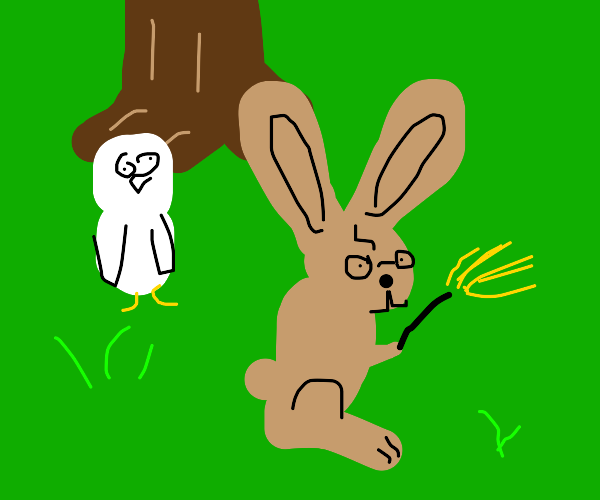 Hare Potter
