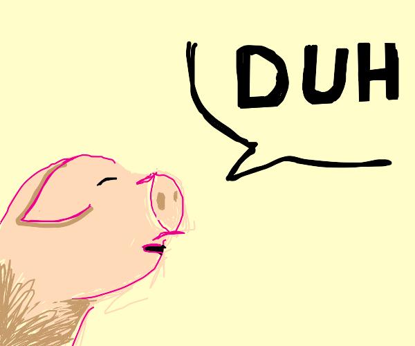 pig says duh