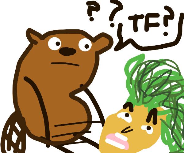 Head rolling away beaver