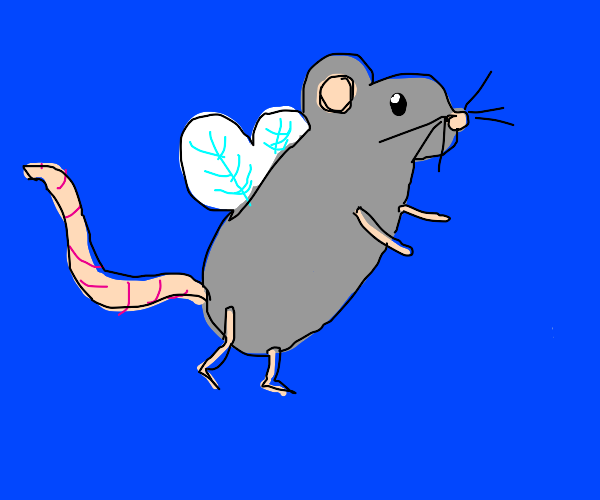 mouse with wings