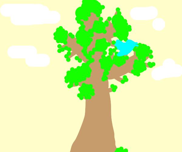 Light blue Bird in tree