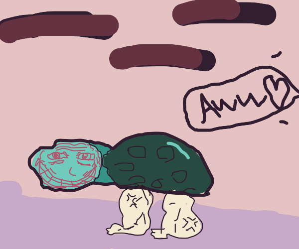 Person Offscreen saying Aw Looking at turtle