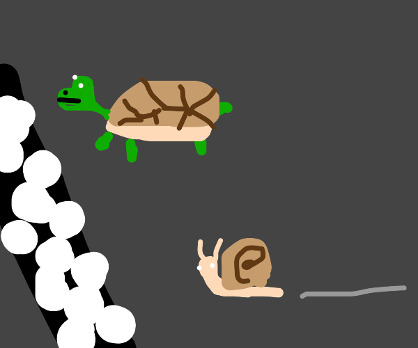 Snail racing a turtle