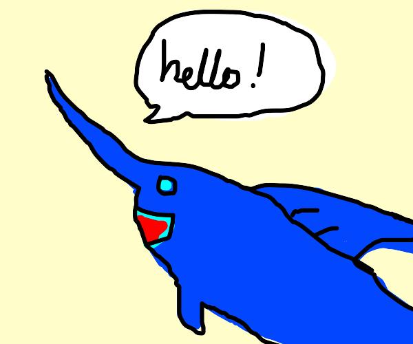 swordfish says hello